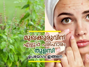 How To Use Tulsi To Treat Acne In Malayalam