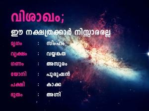 Vishakham Nakshatra Prediction In Malayalam