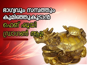 How To Use Feng Shui Dragon Turtle For Wealth