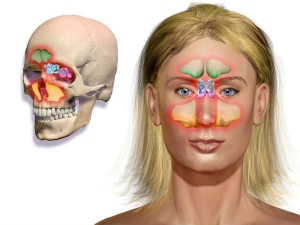 Effective Home Remedies To Treat Sinus Infection