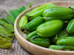 Bilimbi Herb Uses Benefits And Side Effects