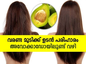 How To Use Avocado Hair Mask For Dry And Damaged Hair