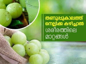 Reasons To Add Amla In Your Diet During Winter Season