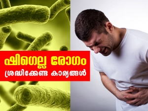 Shigella Infection Symptoms Causes And Treatment