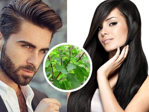 Effective Ways To Use Tulsi For Hair