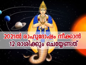 Astrology Remedies For Rahu Impact On All 12 Zodiac Signs