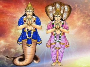 Effects Of Rahu Ketu In All 12 Houses Of The Horoscope In Malayalam