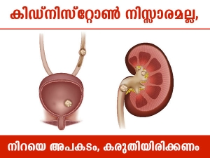 Kidney Stone Diet Plan And Prevention