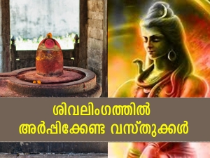 Mahashivratri 2021 Things To Offer On Shivlinga