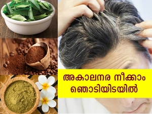 Natural Ingredients That Can Be Used To Cover White Hair