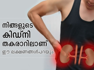 World Kidney Day Early Signs Of Kidney Failure In Malayalam