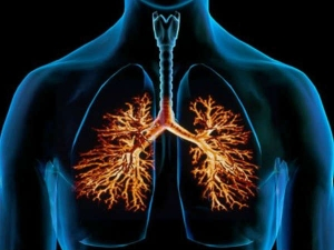 Simple Ways To Keep Your Lungs Strong And Healthy