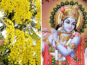 Interesting Facts About Vishu Festival In Malayalam