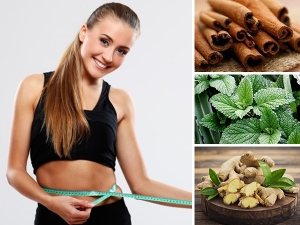 Herbs That Can Help You Lose Weight