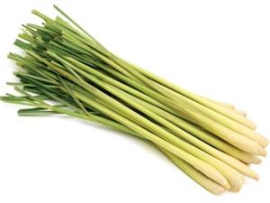 Benefits Of Lemongrass Aromatherapy