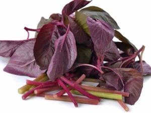 Benefits Of Red Spinach For Skin Hair And Health In Malayalam
