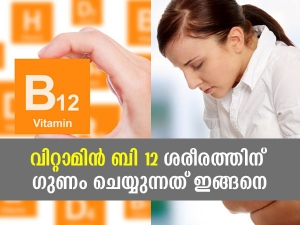 Health Benefits Of Vitamin B12 For Body In Malayalam