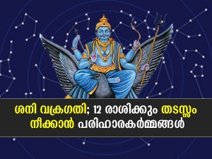 Saturn Retrograde 2021 Remedies To Perform For All 12 Zodiac Signs In Malayalam