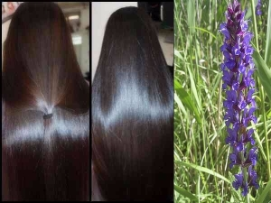 How To Use Henna And Indigo To Color Your Hair Black