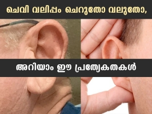 Samudrik Shastra Prediction What Long Ear And Small Ear People Tell About You