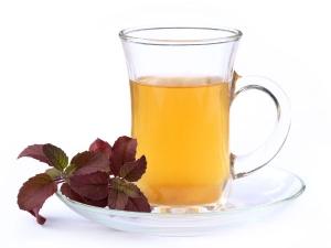 How To Make Tulsi Kashayam Recipe Herbal Drink From Tulsi