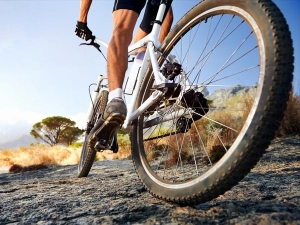 World Bicycle Day Benefits Of Cycling For Weight Loss In Malayalam