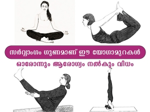International Yoga Day Different Types Of Yoga Asanas And Their Benefits In Malayalam