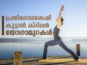 Yoga Asanas That Can Boost Immunity And Improve Breathing In Malayalam