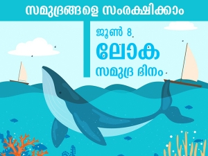 World Ocean Day 2021 Significance History Theme And Quotes In Malayalam