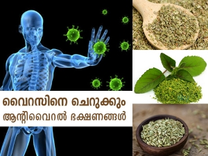 Antiviral Foods To Boost Immunity In Malayalam