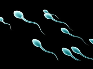 Cervical Mucus Method For Natural Family Planning
