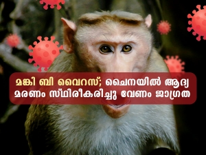China Reports First Human Death From Monkey B Virus Know Symptoms And Treatment In Mala
