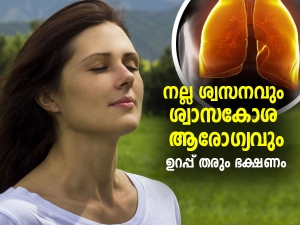 Antioxidant Rich Foods For Lung Health In Malayalam