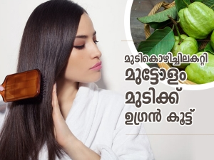 Ways To Use Guava Leaves For Quick Hair Growth In Malayalam