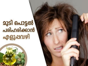 How To Prevent And Stop Hair Breakage Naturally In Malayalam