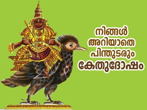 Lal Kitab Ketu Effects And Remedies In Malayalam