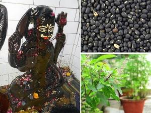 Shani Amavasya Things To Do To Nullify The Negative Effects Of Shani In Malayalam