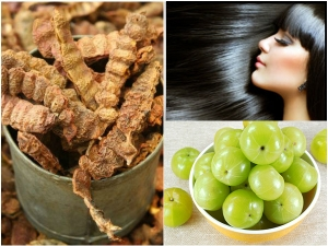 How To Use Amla To Prevent Hair Loss In Malayalam
