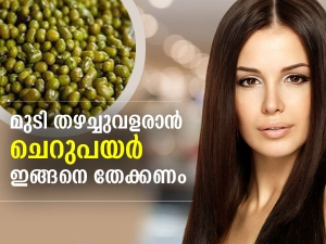 How To Use Green Gram For Hair Growth In Malayalam