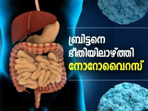 Norovirus Outbreak Know Norovirus Symptoms How It Is Transmitted Treatment And Prevention In Mala