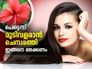 Ways To Use Hibiscus To Treat Different Hair Problems In Malayalam