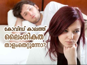 Here S How You Can Boost Your Libido During The Covid 19 Pandemic In Malayalam