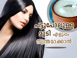 Yogurt Hair Masks For Silky And Shiny Hair In Malayalam
