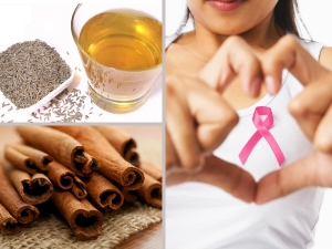 Herbs And Spices For Cancer Prevention In Malayalam