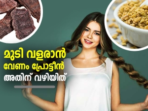 Homemade Protein Rich Hair Masks For Hair Loss In Malayalam
