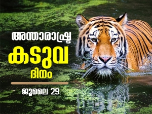 International Tiger Day Theme 2021 History Quotes Slogans In Malayalam