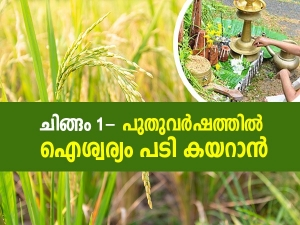 Malayalam New Year Chingam 1 Know Significance And Celebrations In Malayalam