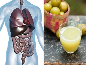 Types Of Drinks Made With Amla To Boost Immunity In Malayalam