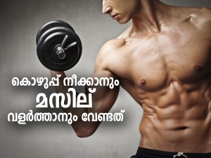 Essential Micronutrients For Muscle Growth And Fat Loss In Men