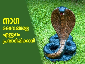 How To Worship On Nag Panchami As Per Your Zodiac Signs In Malayalam